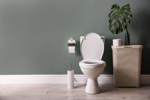Le rehausse WC, une aide de tous les jours