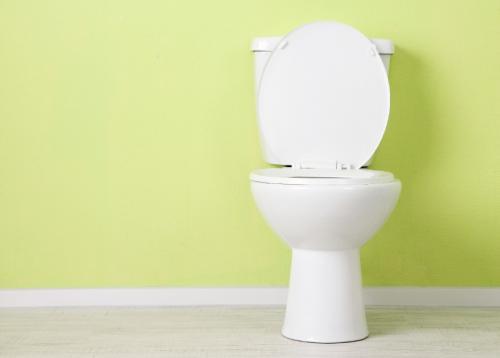 Le cadre de sécurité pour toilette